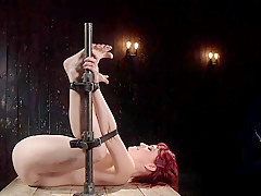 Redhead newcomer vibed in standing bondage