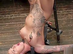 Tattooed busty blonde toyed in bondage
