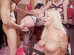 Huge tits Milf sub licked and anal fucked