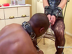 transexual Mistress dominating threeway with white and ebony
