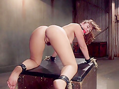 Slave trainee pussy and ass banged
